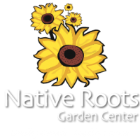 native-roots-logo